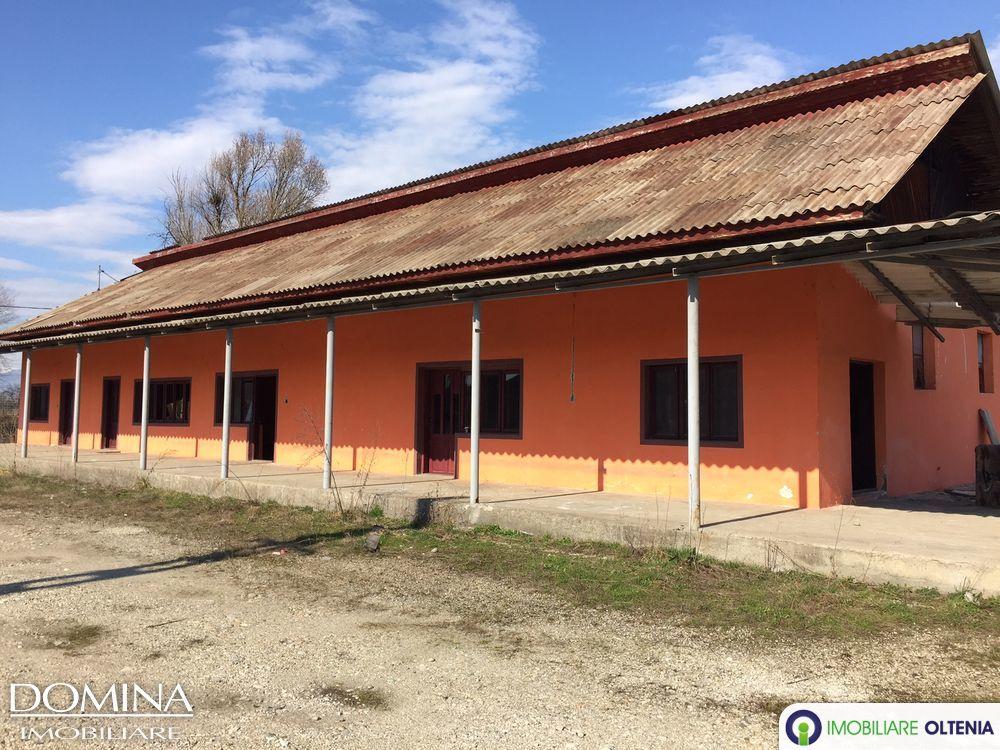 Vânzare hale+teren intravilan 41.744 mp  în Cârbești
