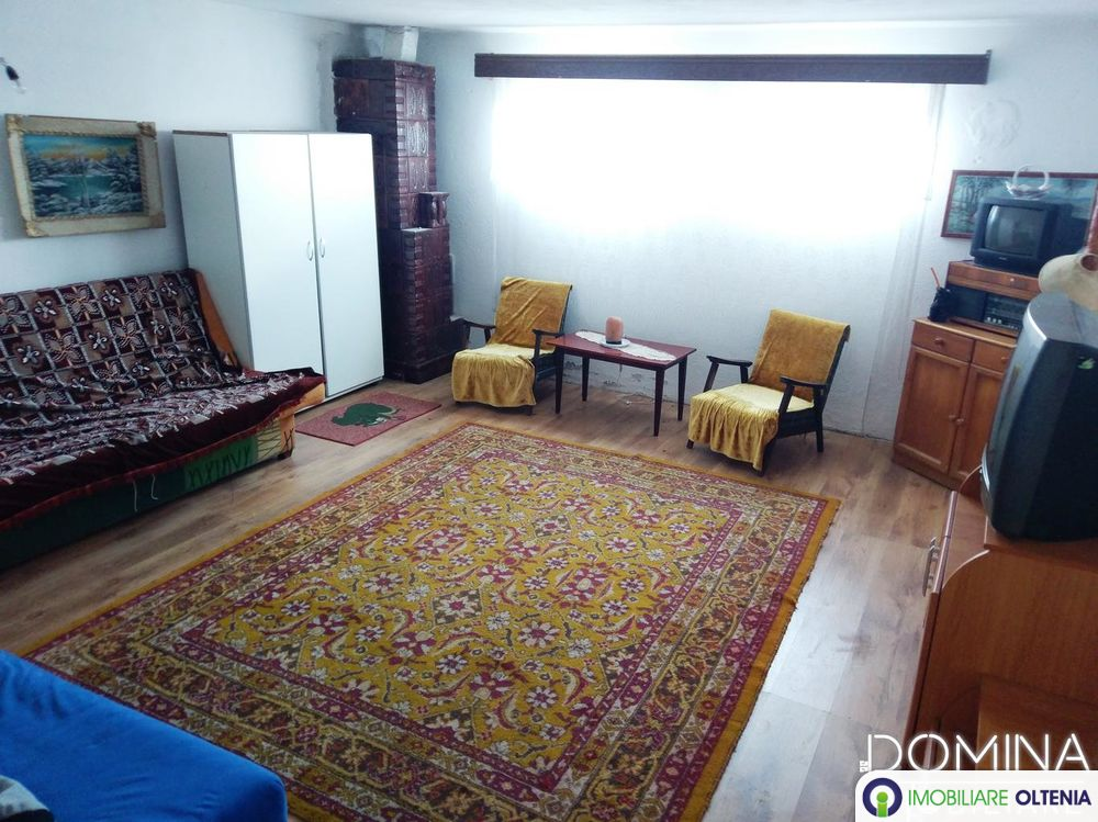 Vânzare spațiu comercial+teren, situate în Comuna Dănești, sat Botorogi